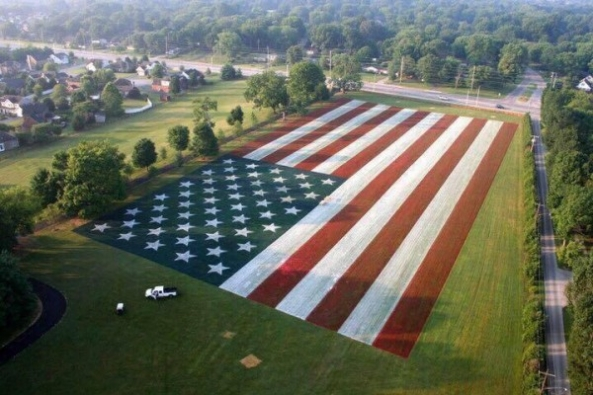 Patriotic Lawns and Landscapes on Independence Day, Fourth of July