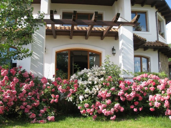 Beautiful landscaping house with lush bushes of roses