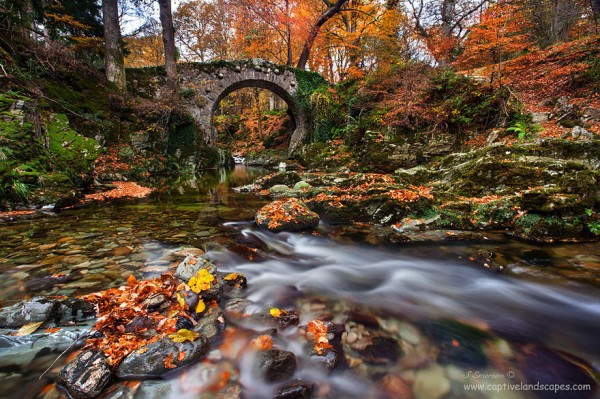 Tollymore, United Kingdom