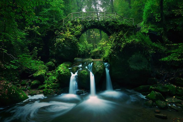 Little Switzerland. Ancient arch bridge in the woods